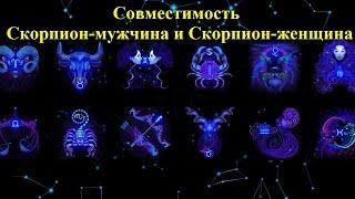 Совместимость Скорпиона с другими знаками в любви