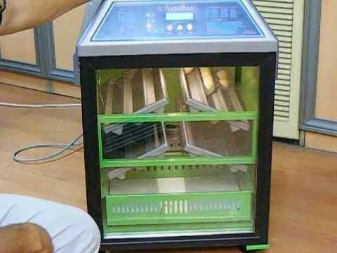 Nestbox incubator  installation .Nestbox kuluçka makinesi kurulumu