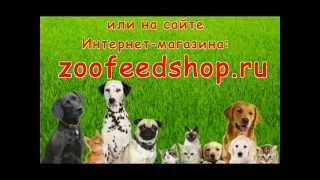 Интернет-зоомагазин zoofeedshop.ru для кошек и собак