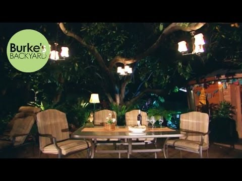 Burke's Backyard, Best Garden Trees To Sit Under