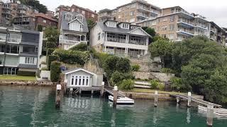 Ngắm du thuyền 🛳 ở vịnh Neutral Bay Sydney