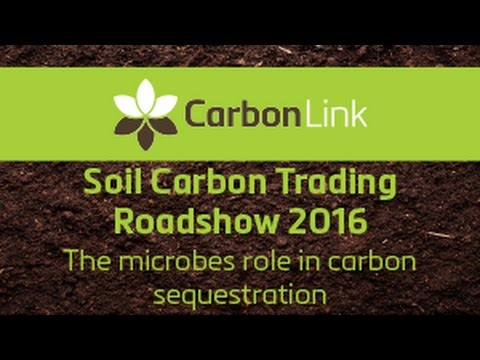 4. The Microbes Role in Soil Carbon Sequestration