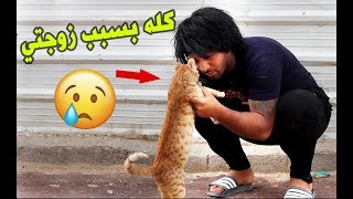 زوجتي خلتني اذب القطة مالتي (البزونة) ◄ وذبيتها من بغداد الى اربيل ◄تحشيش   مصطفى ستار