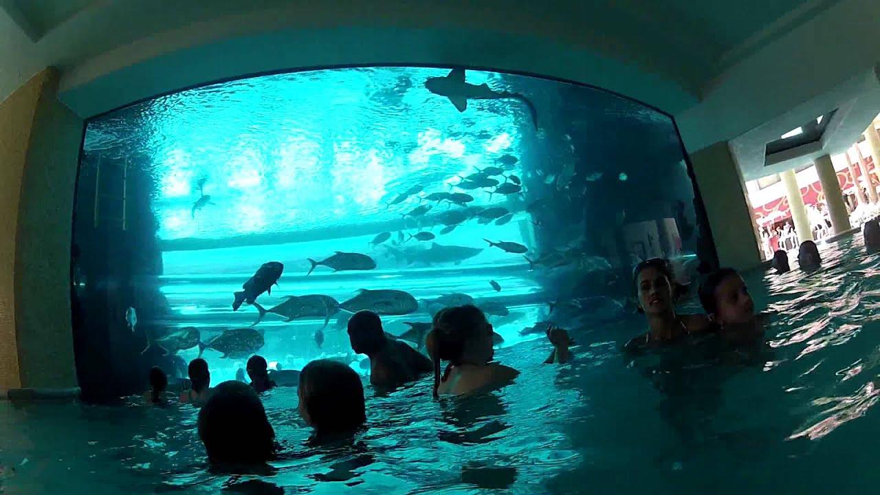 Gopro Shark Tank Water Slide Pov
