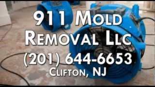 Asbestos Testing Service, Mold Remediation in Clifton NJ