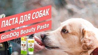 Пищевая паста для собак Бьюти Пэйст   Обзор пищевой пасты для собак   GimDog Beauty Paste - review