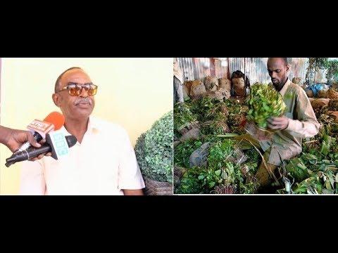 SOMALILAND OO KA HADASHAY SOAMALI OROMADU KU DISHAY ITOOBIYA.