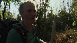 Presenter Gordon Buchanan is trapped by a forest fire - Wild Burma: Nature's Lost Kingdom - BBC Two