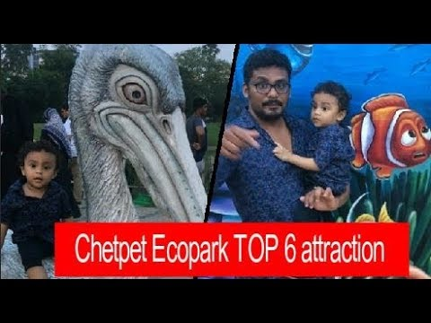 chetpet eco park   TOP 6 attraction   FULL REVIEW