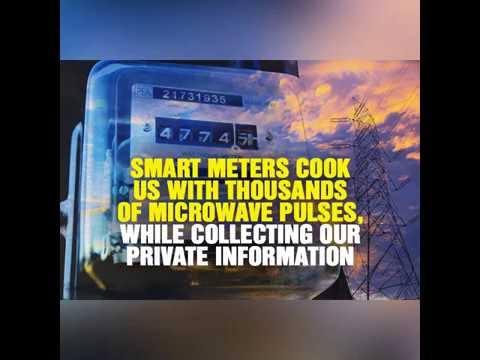 Smart meters cook us with thousands of microwave pulses every day, while collecting our private info