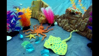 Sea Animals Fun Toys - Learn Animal Names Video For Kids