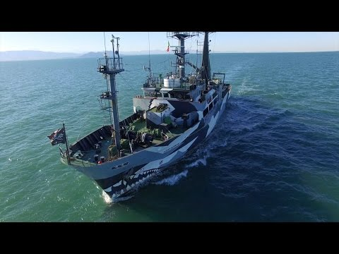 M/V SAM SIMON: Operation Milagro III in the Gulf of California