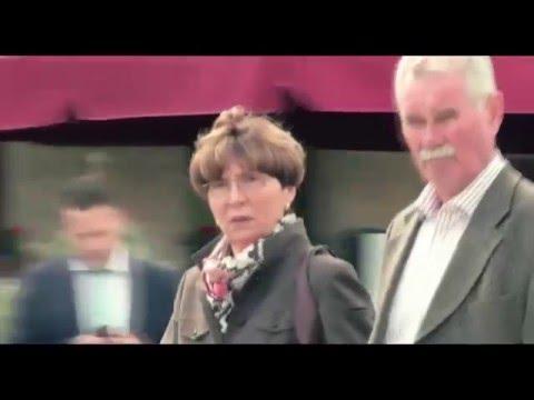 ER IST WIEDER DA - Español (subtitulado)