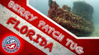 Berry Patch Wreck Dive | Site Guide and Review |  Pompano Beach, Florida