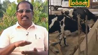 Malarum Bhoomi|Valar Solai|13 02 2019 |Epi 3030| ஒருங்கிணைந்த இயற்கை கூட்டுபண்ணையம்
