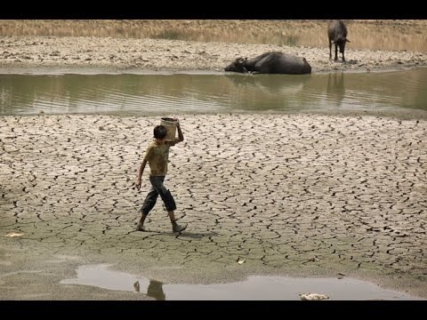 Аномальная жара в Индии унесла жизни более двух тысяч человек