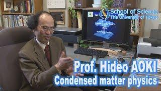 Prof. Hideo Aoki