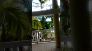 lime tree bay resort 10.23-10.26
