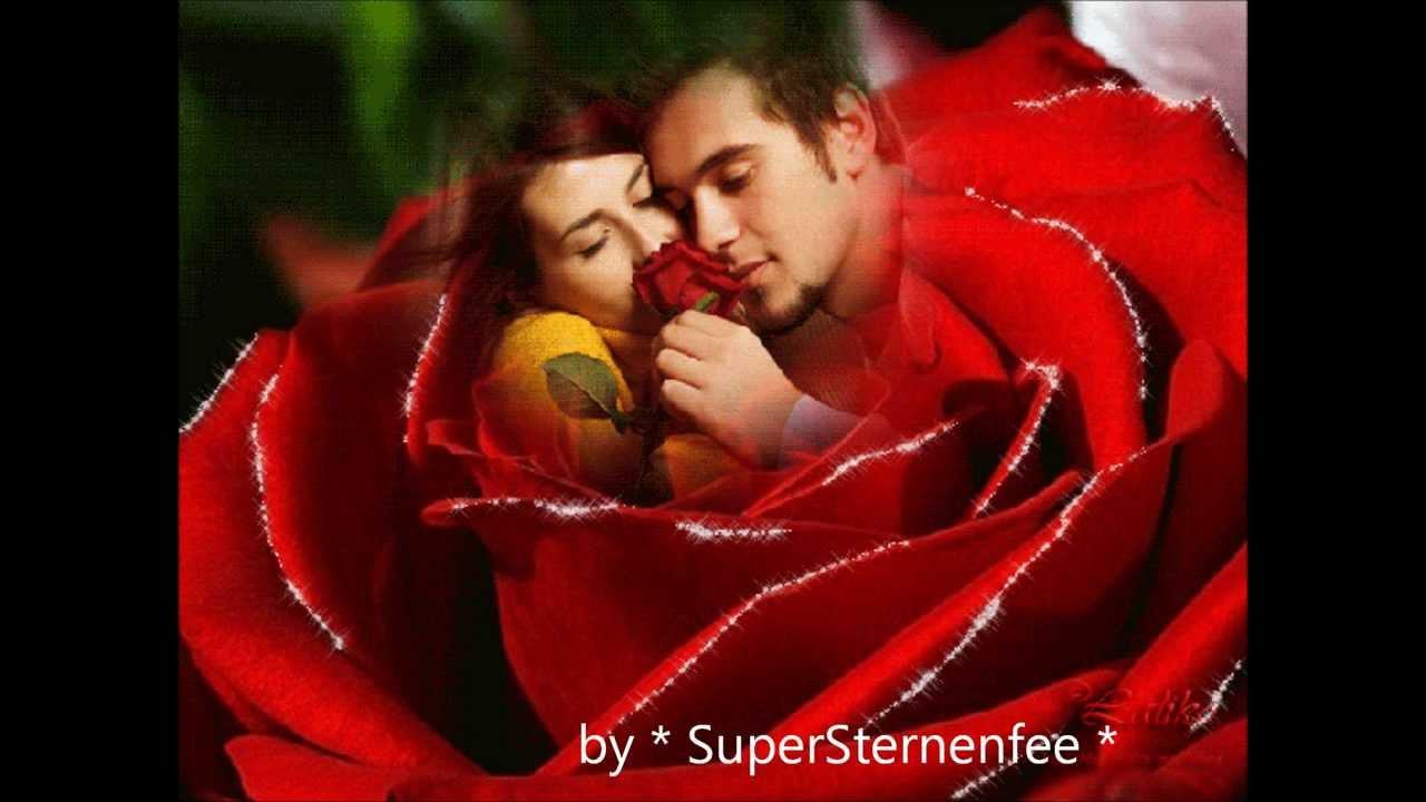 Sieben Rote Rosen  Calimeros   YouTube