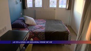 Yvelines | Le co-living, un nouveau mode de vie