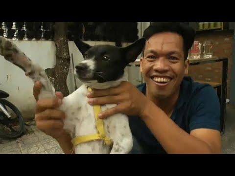 وللناس فيما يعشقون.. شاهد كيف تُسلق الكلاب وتشوى ثم تقدم على الموائد في كمبوديا ؟…  - نشر قبل 2 ساعة