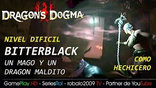 DRAGON DOGMA DARK ARISEN (Como hechicero)  Un Obispo Oscuro  y un DRAGON MALDITO | SeriesRol