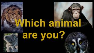 what animal you are