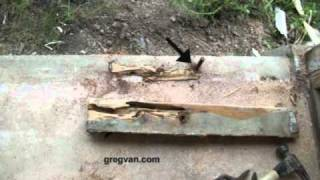 Bottom Framing Plate Replacement - Termite And Water Damage