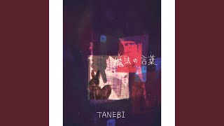 TANEBI - 魔法の言葉