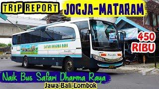 TRIP REPORT NAIK BUS JOGJA—MATARAM, Safari Dharma Raya, 450 RIBU
