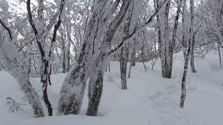 雪の三峰山-板倉峰稜線(奈良県御杖村、2017/02/15) thumbnail
