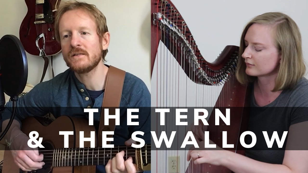 The Tern and The Swallow | Andrew McManus & Tiffany Schaefer