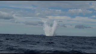 Carro : la bombe détruite dans une opération sans accroc