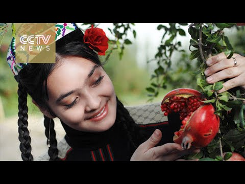 Silk Road Journey Xinjiang: The fruits of e-commerce