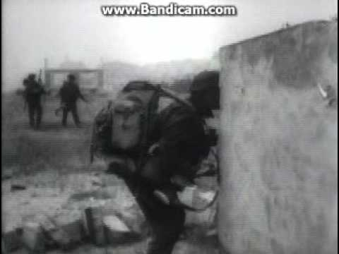 D Day Real Pictures D-Day Real Footage 194...