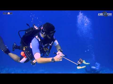 Red Sea Fishes - Dive Trip | SJCAM