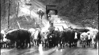 Download Video A Slideshow of the 1985 Flood in West Virginia MP3 3GP MP4