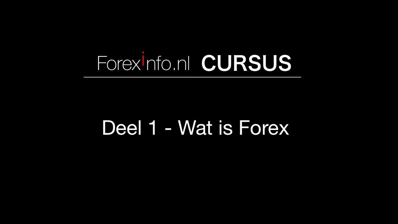 Forexinfo cursus