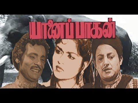 Yaanai Paagan | Tamil Full Movie