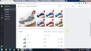Shopify Course Module 17 - Facebook Ads Part 3