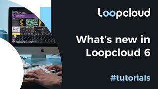 New Features - Loopcloud 6
