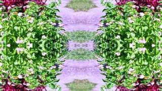 primavera - le quattro stagioni - Vivaldi