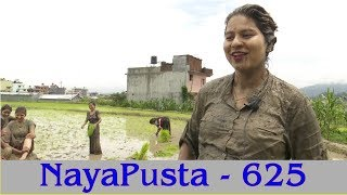 Flood invited by Monsoon | Rice Plantation | NayaPusta - 625