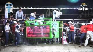¡LA MONTA! VOLADOR VS ZORRO DE LA PLANTA en Sta  Rosa de Lima Tututepec, Oaxaca 23 Enero 2016