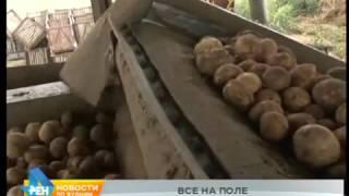 Уборочная кампания ещё не завершена в Иркутской области