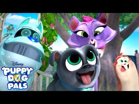 Follow the Leader   Playtime with Puppy Dog Pals   Disney Junior