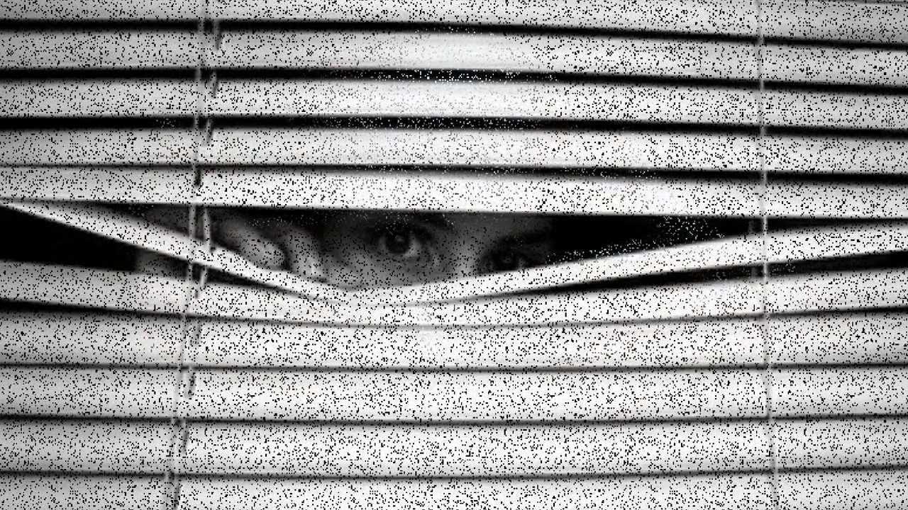 Espiando por la ventana 8 - 2 part 7