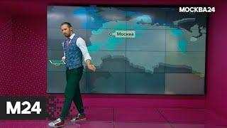 """Смотреть видео """"Погода"""": какая погода ожидает москвичей в конце сентября - Москва 24 онлайн"""