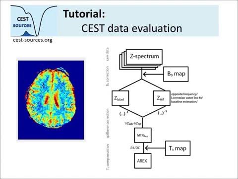 CEST MRI data evaluation tool part 1/2 - basic contrasts