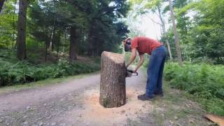 Bass Chainsaw Carving